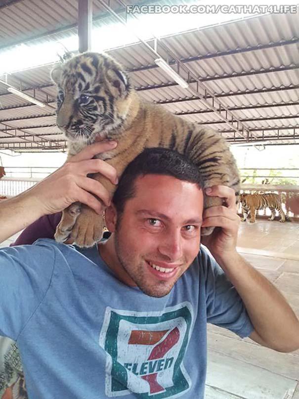Άνθρωποι που φορούν γάτες για καπέλο (4)