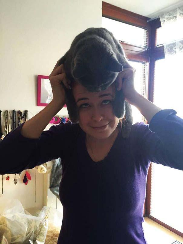 Άνθρωποι που φορούν γάτες για καπέλο (5)