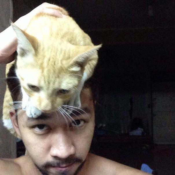 Άνθρωποι που φορούν γάτες για καπέλο (6)