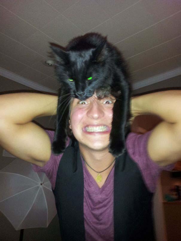 Άνθρωποι που φορούν γάτες για καπέλο (11)