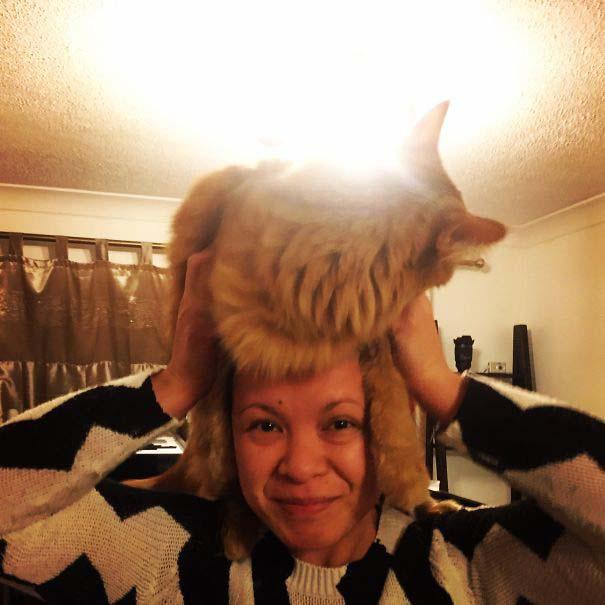 Άνθρωποι που φορούν γάτες για καπέλο (16)
