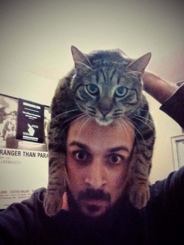 Άνθρωποι που φορούν γάτες για καπέλο (17)