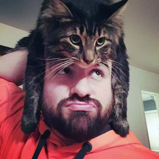Άνθρωποι που φορούν γάτες για καπέλο (21)