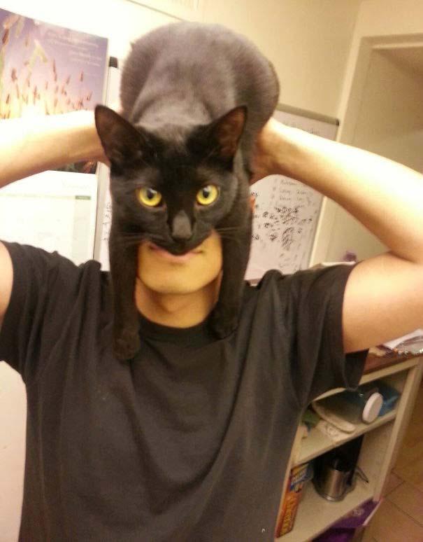 Άνθρωποι που φορούν γάτες για καπέλο (24)