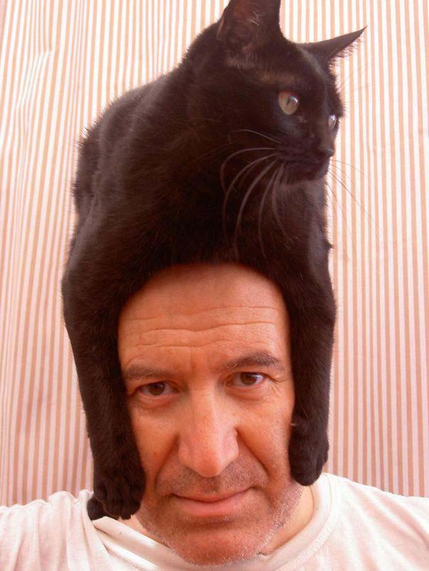Άνθρωποι που φορούν γάτες για καπέλο (29)