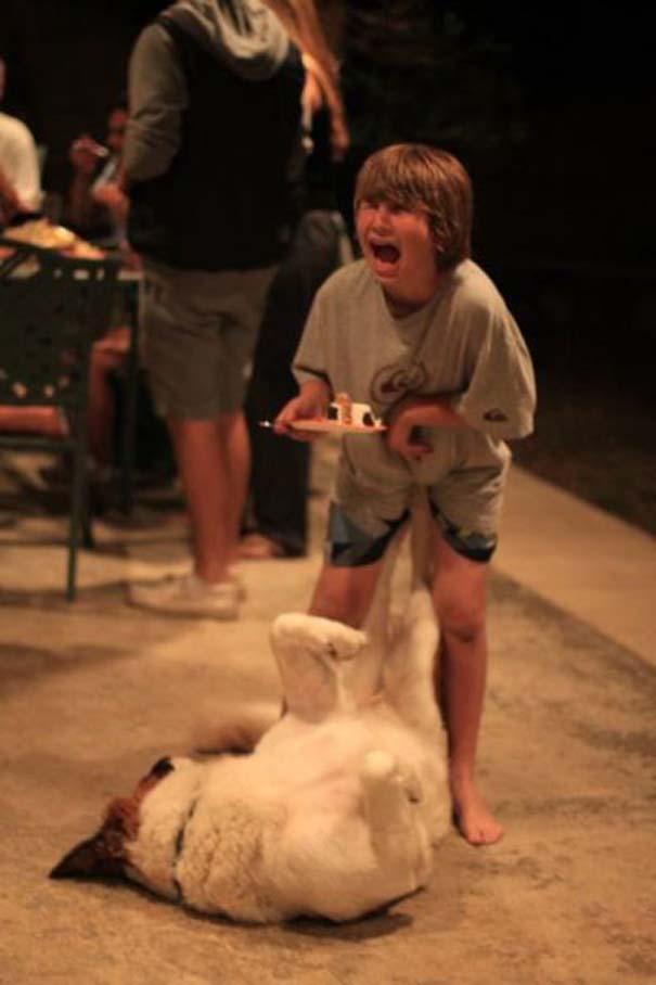 Φωτογραφίες σκύλων που τραβήχτηκαν την τέλεια στιγμή (7)