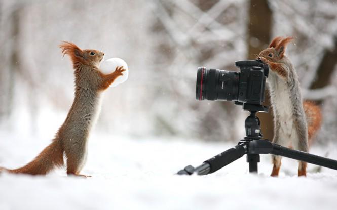 Φωτογράφηση στο χιόνι | Φωτογραφία της ημέρας