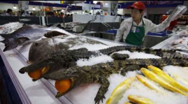 Πράγματα που θα δεις μόνο σε ένα Κινέζικο σούπερ μάρκετ (2)