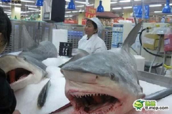 Πράγματα που θα δεις μόνο σε ένα Κινέζικο σούπερ μάρκετ (14)