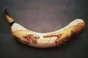 Τέχνη με μπανάνες από τον Stephan Brusche (2)