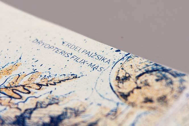 Πως θα ήταν τα χαρτονομίσματα του ευρώ αν τα σχεδίαζε μια φοιτήτρια από την Ουγγαρία (3)