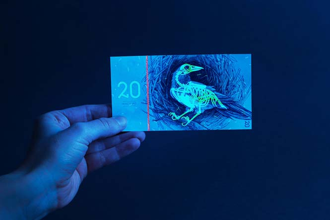 Πως θα ήταν τα χαρτονομίσματα του ευρώ αν τα σχεδίαζε μια φοιτήτρια από την Ουγγαρία (12)