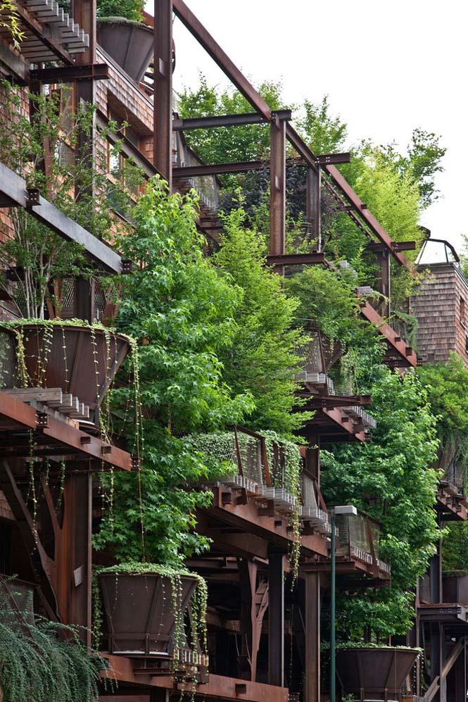 5όροφο δενδρόσπιτο μέσα στην πόλη (4)