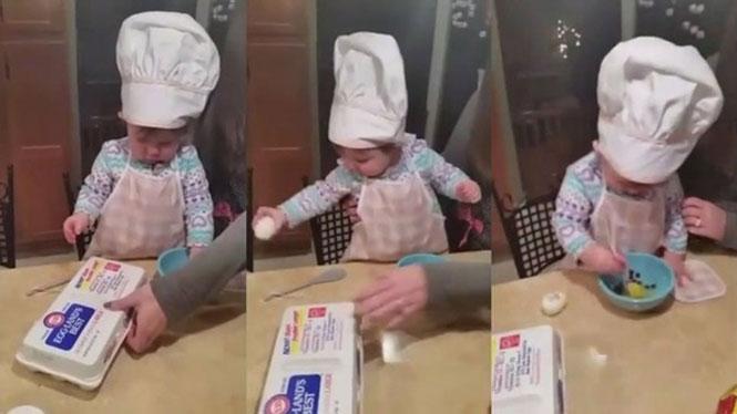 Chef 1,5 έτους