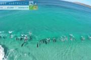 Drone κατέγραψε δελφίνια που σερφάρουν πάνω στα κύματα