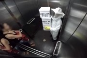 Φάρσα με μέλισσες δολοφόνους στο ασανσέρ