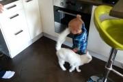 Γάτα προστατεύει αγοράκι από φούρνο που καίει