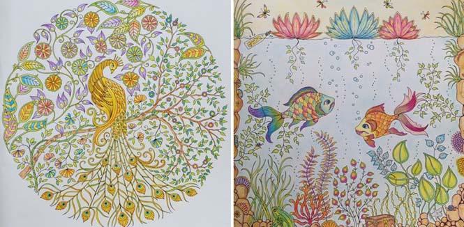 Καλλιτέχνις δημιούργησε βιβλία χρωματισμού για ενήλικες και πούλησε ένα εκατομμύριο αντίτυπα (14)
