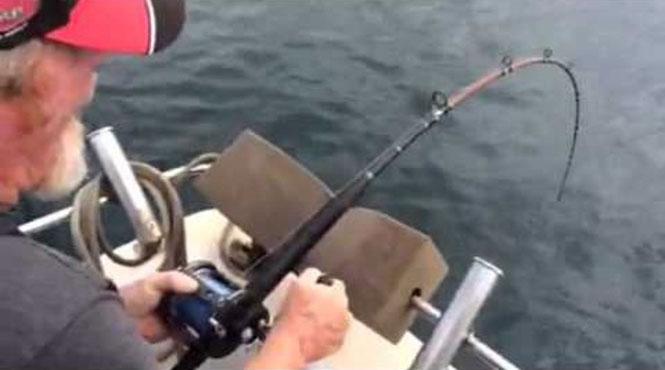 Κι ενώ ψάρευε αμέριμνος, ξαφνικά... μεγάλος λευκός καρχαρίας!