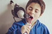 Penguin: Το πιο δημοφιλές πτηνό στο Instagram (1)