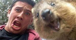 Quokka selfie: Το χαριτωμένο νέο trend φωτογράφησης από την Αυστραλία