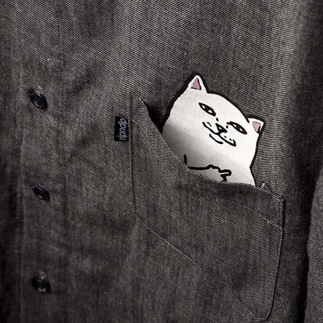 T-shirts με γατούλα στην τσέπη που κρύβει εκπλήξεις (3)