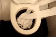 Το πιο χαζό πράγμα που μπορείς να κάνεις τραβώντας το καζανάκι της τουαλέτας