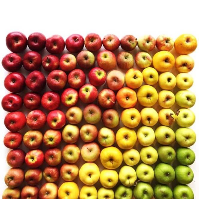 Φωτογράφος μετατρέπει τα τρόφιμα σε τέχνη (14)