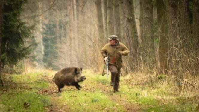 Όταν ο κυνηγός γίνεται κυνηγημένος (2)