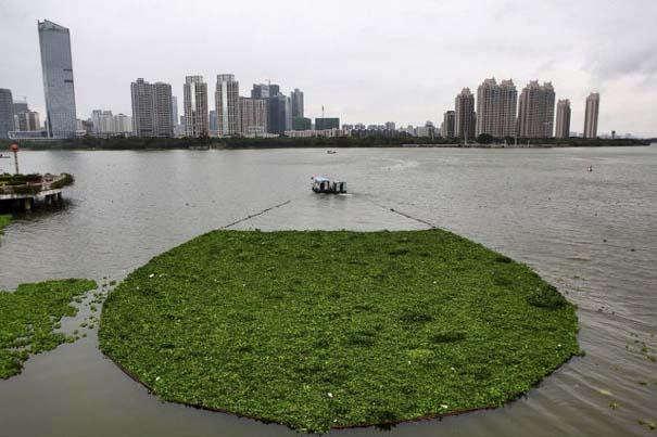 Εν τω μεταξύ, στην Κίνα... #3 (3)