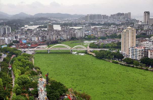 Εν τω μεταξύ, στην Κίνα... #3 (4)