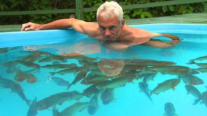 Κολυμπώντας με πιράνχας