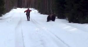 Πως να τρομάξετε μια επιθετική αρκούδα (Video)