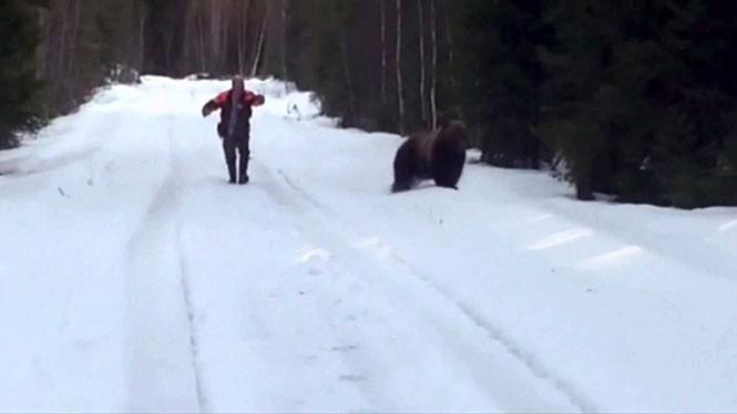 Πως να τρομάξετε μια επιθετική αρκούδα