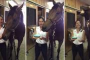 Άλογο σβήνει την τούρτα γενεθλίων του και χαρίζει ένα τεράστιο χαμόγελο