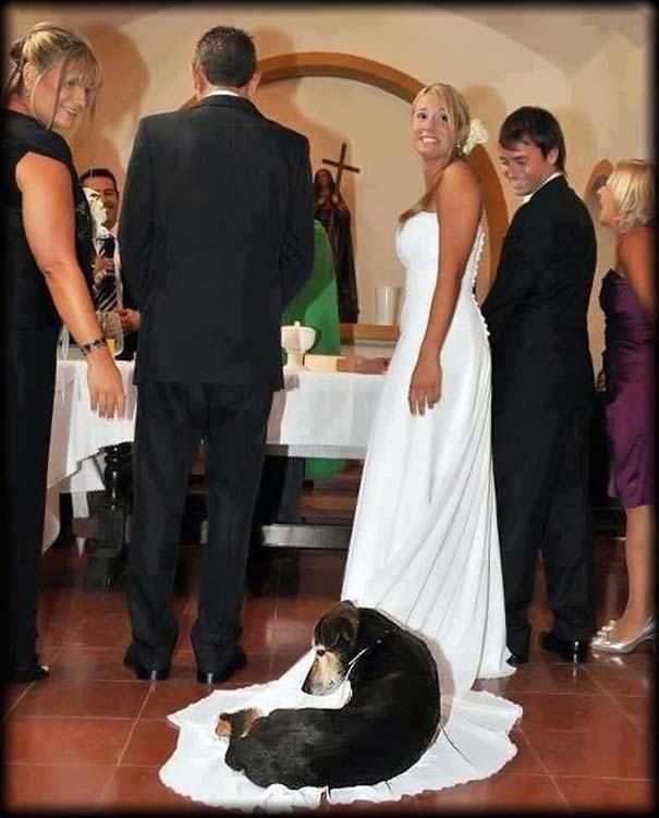 Αστείες φωτογραφίες γάμων #48 (13)