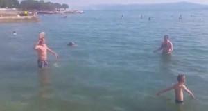 Εν τω μεταξύ, σε κάποια παραλία της Βοσνίας… (Video)