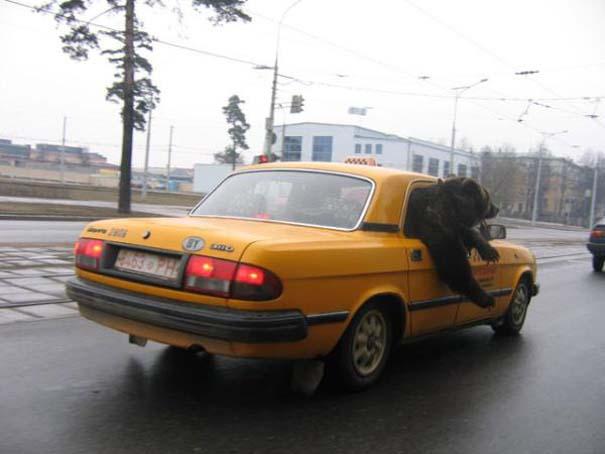 Εν τω μεταξύ, στη Ρωσία... #60 (9)