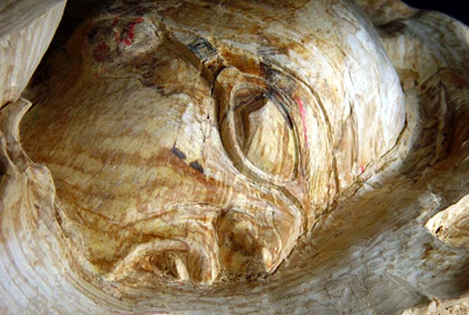 Γλύπτης μετέτρεψε κομμάτι ξύλου σε κάτι εκπληκτικό (8)