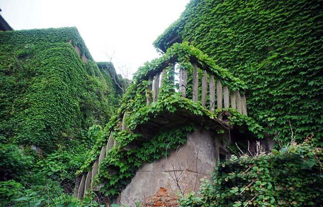 Το Κινεζικό χωριό - φάντασμα που έγινε ένα με την φύση (3)