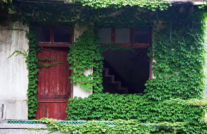 Το Κινεζικό χωριό - φάντασμα που έγινε ένα με την φύση (5)
