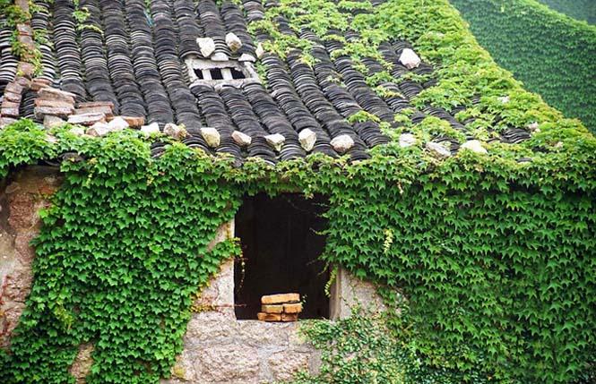 Το Κινεζικό χωριό - φάντασμα που έγινε ένα με την φύση (11)