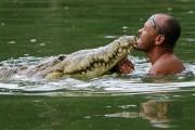Κολυμπώντας με έναν κροκόδειλο
