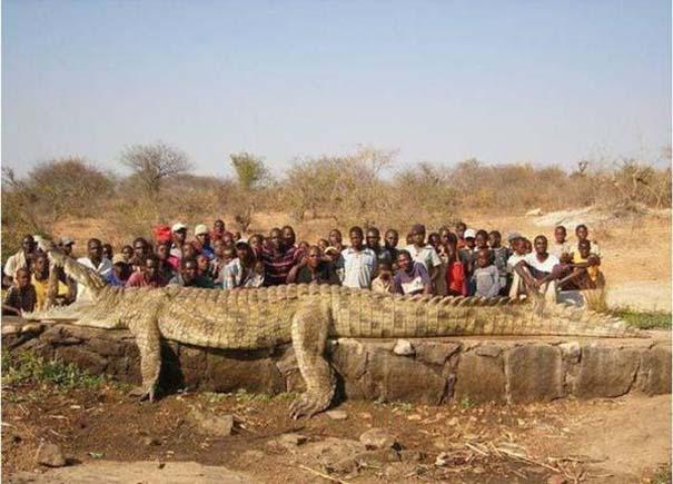 Μόνο στην Αφρική #3 (26)
