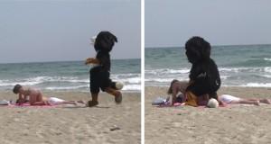 Ξεκαρδιστικό: Ο Remi Gaillard μεταμφιέζεται σε σκύλο και τρελαίνει κόσμο (Video)