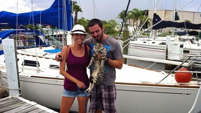 Ζευγάρι παραιτήθηκε από τις δουλειές του και πούλησε τα πάντα για να ταξιδέψει στον κόσμο με την γάτα τους (3)