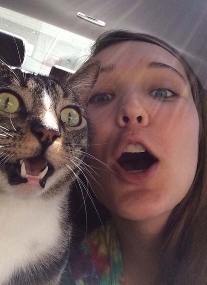 Ζώα που δεν γουστάρουν τις selfies (15)