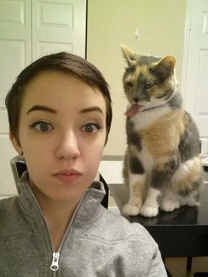 Ζώα που δεν γουστάρουν τις selfies (17)