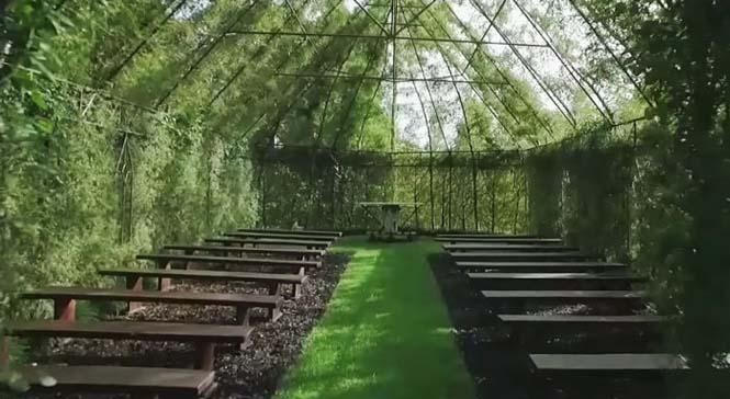 Άνδρας αφιέρωσε 4 χρόνια στην ανάπτυξη ενός ναού από δένδρα (6)