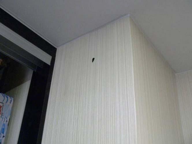 Ιδιοκτήτες σπιτιού ανακάλυψαν κάτι πολύ περίεργο κολλημένο στον τοίχο τους (1)